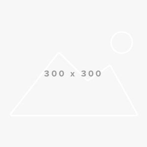 Board-Member-300×3001